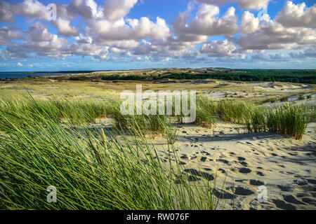 Sand dunes on the Baltic sea coastline in Nida. Lithuania - Stock Photo
