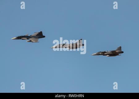 Saab JAS 39 Gripen is a Swedish built 4th generation single engine jet fighter - Stock Photo