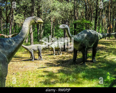 Vulcanodon Sauropods in the forest, herd of sauropods, parents and offspring. - Stock Photo