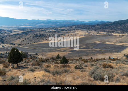 Aerial view of farm fields in late autumn in California, USA - Stock Photo