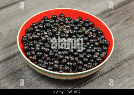 Bowl with red inside, full of blackcurrant, on wooden desk. - Stock Photo