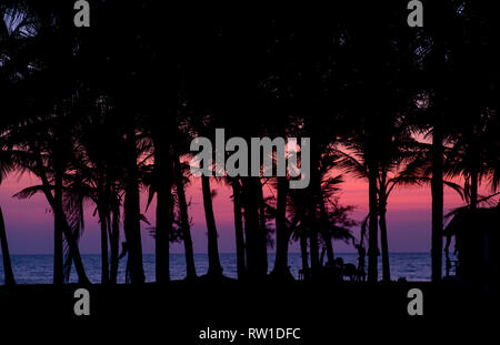 A gorgeous sunset over a ocean with the silhouettes of palm trees in the front. - Stock Photo