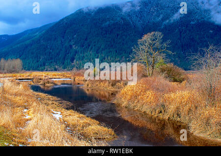 Pitt Polder creek in early March with dried grass on either side and a mountain in the background. - Stock Photo