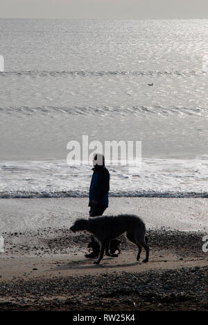 Weymouth, Dorset. 4th March 2019. A man walks his dog on Weymouth beach in the eary morning Credit: stuart fretwell/Alamy Live News