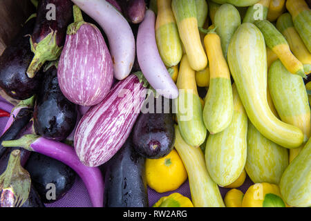 High angle view of eggplants (Solanum melongena) and a variety of gourds on display for sale at farmers' market, Rehoboth Beach, Delaware - Stock Photo