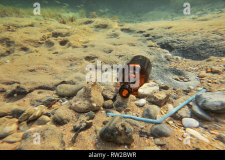 Underwater photo - small brown beer bottle and blue plastic straw on sea floor. Ocean littering concept. - Stock Photo
