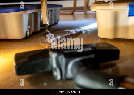 Hausstaub, Wollmäuse, Staubknäule, sammeln sich unter einem Bett, Staubsauger, - Stock Photo