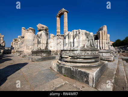 Picture of the Ionian columns of the ruins of the Ancient Ionian Greek  Didyma Temple of Apollo & home to the Oracle of Apollo.  Also known as the Did - Stock Photo