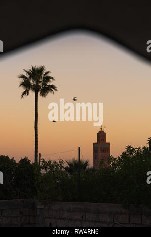 Sunrise / dawn over the roofs of Marrakesh with view of the picturesque and famous Koutoubia Mosque with red glooming sky (Marrakesh, Morocco, Africa) - Stock Photo