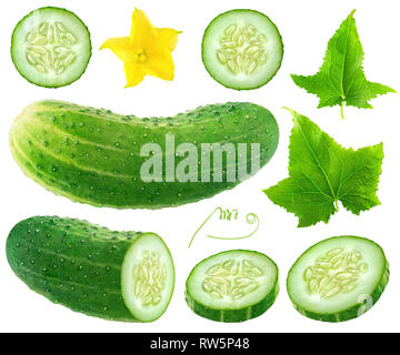 Isolated cucumber collection. Whole and cut cucumber, flower and leaves isolated on white background with clipping path - Stock Photo