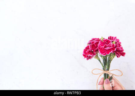 May mothers day idea concept photography - Beautiful blooming carnations tied by rope bow holding in woman's hand isolated on bright modern table, cop - Stock Photo