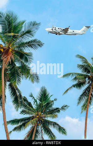 Plane flying over palm trees. Flying industry. Summer air travel. Jungle summer.  Vertical photo. - Stock Photo