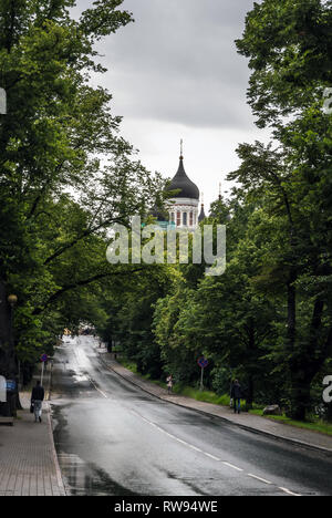 Wet road in the Tallinn center with lush green vegetation around and Alexander Nevsky Cathedral domes in the distance in fresh rainy day. - Stock Photo
