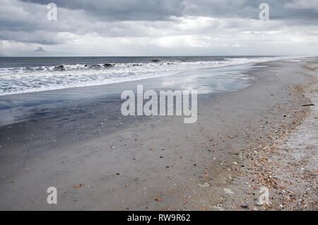 Pacific Ocean and sandy coast with rare shells - Stock Photo