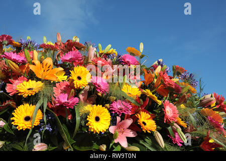 Floristic decoration with colorful gerberas and lilies against a blue sky - Stock Photo