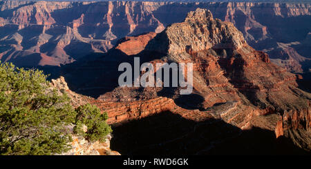 USA, Arizona, Grand Canyon National Park, North Rim, Evening light on Vishnu Temple and surrounding formations, view south from Cape Royal. - Stock Photo