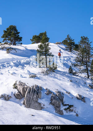 Fit and healthy elderly woman climbing a cross country skiing piste in Navarre, Spain - Stock Photo
