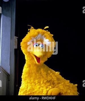 BIG BIRD, THE ADVENTURES OF ELMO IN GROUCHLAND, 1999 - Stock Photo