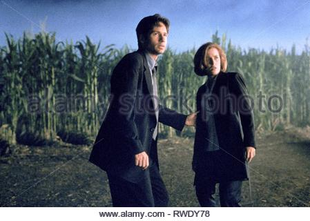 DUCHOVNY,ANDERSON, THE X FILES, 1998 - Stock Photo