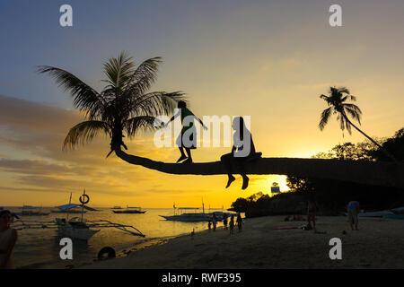 Kids Climbing on Palm Tree at Sunset - Panglao - Bohol, Philippines - Stock Photo