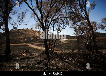 The aftermath and destruction left behind from bushfires in Chidowla Road, New South Wales, Australia. - Stock Photo