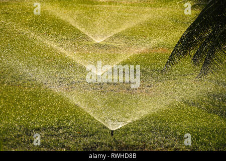 Irrigation watering system with sprinkler heads watering green grass on a sunny day - Stock Photo