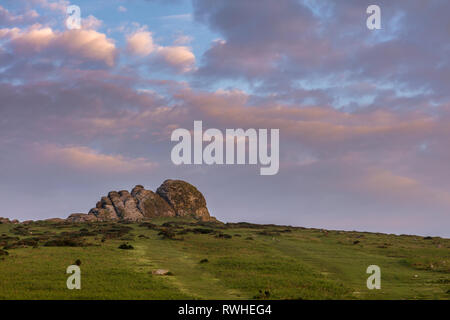 Haytor or Haytor Rocks on Dartmoor in Devon under a pink sky at daybreak - Stock Photo