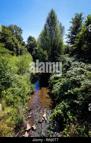 Dortmund, Ruhr area, North Rhine-Westphalia, Germany - Emscher, renaturalized river in Dortmund-Schoenau. The ecological reconstruction of the Emscher - Stock Photo