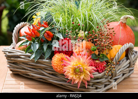 botany, decorated basket with flowers and fr, Caution! For Greetingcard-Use / Postcard-Use In German Speaking Countries Certain Restrictions May Apply - Stock Photo