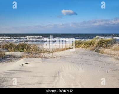 Sand dunes with grass and shrubs protecting beach from the storms in Hiddensee island, Baltic See, Northern Germany. Text space on the sand below. - Stock Photo