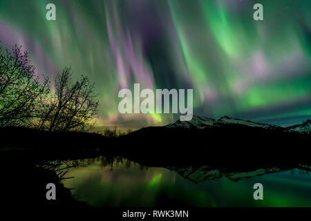 Northern Lights over Moose Lake, Tongass National Forest; Alaska, United States of America - Stock Photo