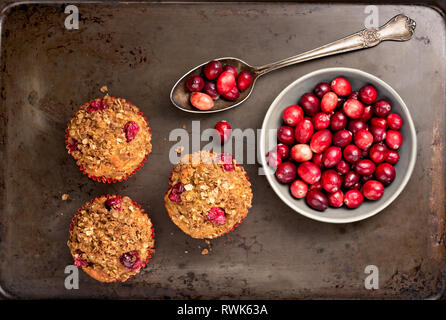 Freshly baked cranberry muffins on a rustic baking pan with cranberries. - Stock Photo