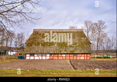 Farmhouse as a traditional half-timbered house roofed with reed. Mecklenburg-Vorpommern, Germany - Stock Photo