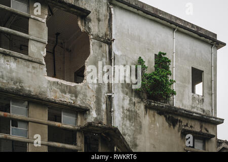 Tree grows in an abandoned building, old ruined industry, factory, warehouse; broken and destroyed windows, exterior view, Hualien, Taiwan - Stock Photo