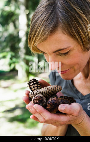 Woman with handful of pine cones in forest - Stock Photo