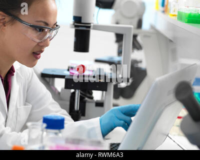 Scientist viewing results on computer during experiment in laboratory