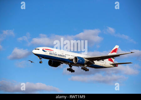 A British Airways Boeing 777-236ER plane lands at Heathrow Airport in West London. - Stock Photo