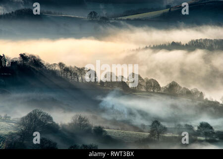 Morning mist in the Derwent Valley. The Peak District, England (2) - Stock Photo