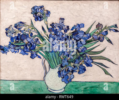 Irises, Vincent van Gogh (1890). The Metropolitan Museum of Art, Manhattan, New York USA - Stock Photo