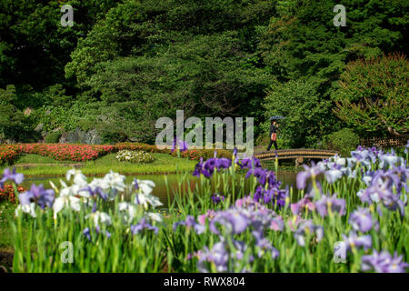 Gardens of the Imperial Palace map in Tokyo city, Japan - Stock Photo