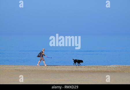 person walking dog on seashore, holkham beach, north norfolk, england - Stock Photo