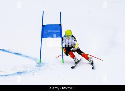 Krasnoyarsk, Russia. 8th Mar, 2019. China's Gao Zhiqian competes during the men's giant slalom of Alpine Skiing at the 29th Winter Universiade in Krasnoyarsk, Russia, March 8, 2019. Credit: Jiang Wenyao/Xinhua/Alamy Live News - Stock Photo