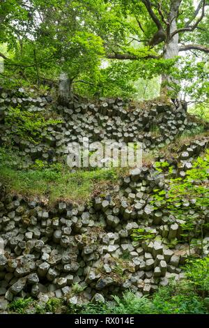 Basalt prisms, Gangolfsberg, Rhön Biosphere Reserve, Bavaria, Germany, Europe - Stock Photo