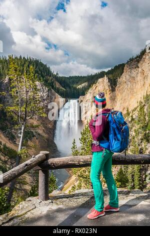 Hiker at Red Rock Viewpoint, Lower Falls, Waterfall in a gorge, Grand Canyon of the Yellowstone River, View from North Rim - Stock Photo