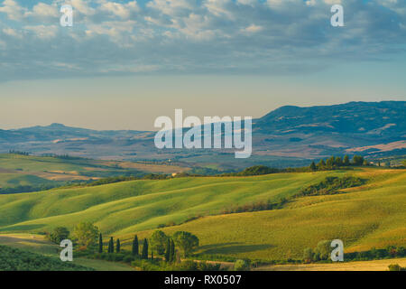 Early morning in Tuscany - Stock Photo