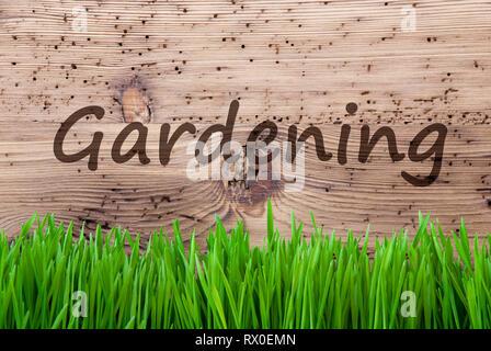 Bright Wooden Background, Grass, English Text Gardening - Stock Photo