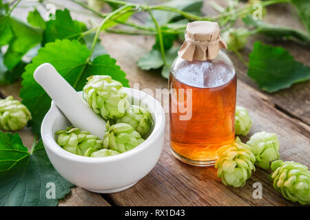 Healthy hop cones in mortar and bottle of medicinal tincture or infusion. - Stock Photo