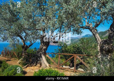 Mallorca island landscape. Tramontana mountains. - Stock Photo