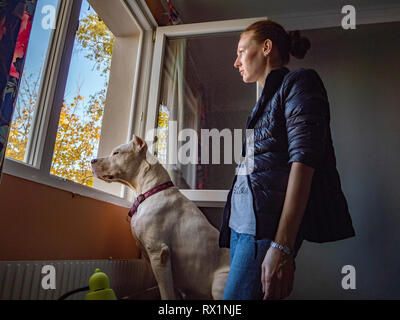 Side view of woman with Great Dane looking through window while standing in bedroom at home - Stock Photo