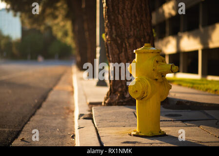 A yellow Hydrant next to the side of a road during sunset in LA, America - Stock Photo